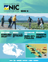 nic-programs-at-a-glance-chinese-flyer